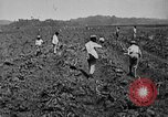 Image of workers San Juan Puerto Rico, 1935, second 19 stock footage video 65675052102