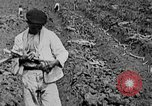 Image of workers San Juan Puerto Rico, 1935, second 21 stock footage video 65675052102