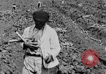 Image of workers San Juan Puerto Rico, 1935, second 22 stock footage video 65675052102