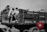 Image of workers San Juan Puerto Rico, 1935, second 56 stock footage video 65675052102