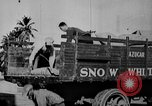 Image of workers San Juan Puerto Rico, 1935, second 58 stock footage video 65675052102
