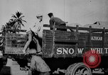 Image of workers San Juan Puerto Rico, 1935, second 59 stock footage video 65675052102