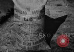 Image of workers San Juan Puerto Rico, 1935, second 62 stock footage video 65675052102