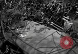Image of United States soldiers Burma, 1944, second 25 stock footage video 65675052229
