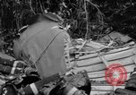 Image of United States soldiers Burma, 1944, second 12 stock footage video 65675052234