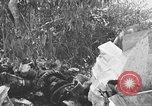 Image of wreckage of Japanese plane Burma, 1944, second 1 stock footage video 65675052238