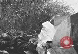 Image of wreckage of Japanese plane Burma, 1944, second 2 stock footage video 65675052238