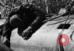 Image of wreckage of Japanese plane Burma, 1944, second 29 stock footage video 65675052238