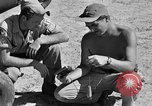 Image of L-5 plane Burma, 1945, second 34 stock footage video 65675052248