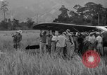 Image of L-5 Piper Cub planes Palawan Philippines, 1945, second 46 stock footage video 65675052257