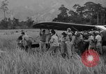Image of L-5 Piper Cub planes Palawan Philippines, 1945, second 47 stock footage video 65675052257