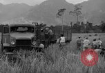 Image of L-5 Piper Cub planes Palawan Philippines, 1945, second 48 stock footage video 65675052257