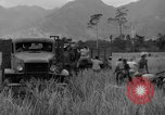 Image of L-5 Piper Cub planes Palawan Philippines, 1945, second 49 stock footage video 65675052257