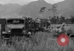 Image of L-5 Piper Cub planes Palawan Philippines, 1945, second 50 stock footage video 65675052257