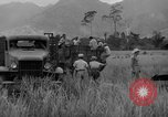 Image of L-5 Piper Cub planes Palawan Philippines, 1945, second 52 stock footage video 65675052257