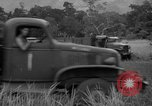 Image of L-5 Piper Cub planes Palawan Philippines, 1945, second 56 stock footage video 65675052257