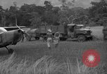Image of L-5 Piper Cub planes Palawan Philippines, 1945, second 58 stock footage video 65675052257