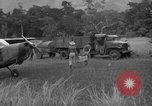 Image of L-5 Piper Cub planes Palawan Philippines, 1945, second 59 stock footage video 65675052257