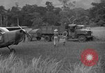 Image of L-5 Piper Cub planes Palawan Philippines, 1945, second 60 stock footage video 65675052257