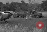 Image of L-5 Piper Cub planes Palawan Philippines, 1945, second 61 stock footage video 65675052257