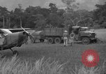 Image of L-5 Piper Cub planes Palawan Philippines, 1945, second 62 stock footage video 65675052257