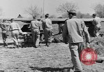 Image of Piper Cub plane Italy, 1944, second 60 stock footage video 65675052266