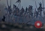 Image of U.S. 4th Marine Division in battle Marshall Islands, 1944, second 33 stock footage video 65675052298