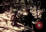 Image of United States 25th Infantry Division Vietnam, 1967, second 58 stock footage video 65675052326