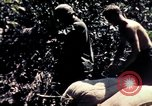 Image of United States 25th Infantry Division Vietnam, 1967, second 12 stock footage video 65675052327