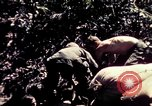 Image of United States 25th Infantry Division Vietnam, 1967, second 17 stock footage video 65675052327