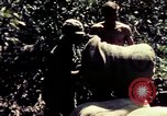 Image of United States 25th Infantry Division Vietnam, 1967, second 25 stock footage video 65675052327