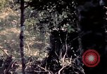 Image of United States 25th Infantry Division Vietnam, 1967, second 60 stock footage video 65675052327