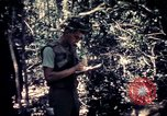 Image of United States troops Vietnam, 1967, second 6 stock footage video 65675052328