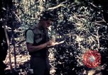 Image of United States troops Vietnam, 1967, second 7 stock footage video 65675052328