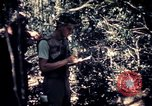 Image of United States troops Vietnam, 1967, second 9 stock footage video 65675052328