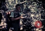 Image of United States troops Vietnam, 1967, second 10 stock footage video 65675052328