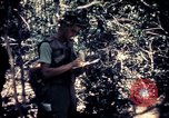 Image of United States troops Vietnam, 1967, second 11 stock footage video 65675052328