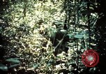 Image of 25th Infantry Division troops Vietnam, 1967, second 26 stock footage video 65675052330