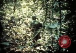 Image of 25th Infantry Division troops Vietnam, 1967, second 27 stock footage video 65675052330
