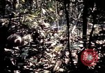 Image of 25th Infantry Division troops Vietnam, 1967, second 38 stock footage video 65675052330