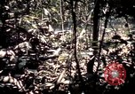 Image of 25th Infantry Division troops Vietnam, 1967, second 39 stock footage video 65675052330