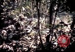 Image of 25th Infantry Division troops Vietnam, 1967, second 43 stock footage video 65675052330