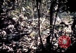 Image of 25th Infantry Division troops Vietnam, 1967, second 44 stock footage video 65675052330