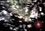 Image of 25th Infantry Division troops Vietnam, 1967, second 45 stock footage video 65675052330
