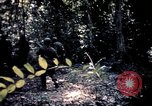 Image of 25th Infantry Division troops Vietnam, 1967, second 48 stock footage video 65675052330