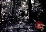 Image of 25th Infantry Division troops Vietnam, 1967, second 51 stock footage video 65675052330