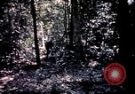 Image of 25th Infantry Division troops Vietnam, 1967, second 52 stock footage video 65675052330