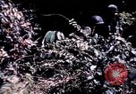 Image of 25th Infantry Division troops Vietnam, 1967, second 58 stock footage video 65675052330