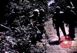 Image of 25th Infantry Division troops Vietnam, 1967, second 62 stock footage video 65675052330