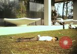 Image of Fallen Vietcong on embassy grounds Saigon Vietnam, 1968, second 1 stock footage video 65675052350